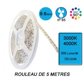 """Rouleau 5M """"SNAKE IP65"""" 9,6W/M IRC90 --- (2 déclinaisons)"""