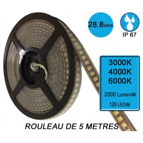 "Rouleau 5M ""FLEXIBLE IP67"" 28,8W/M IRC80 --- (3 déclinaisons)"